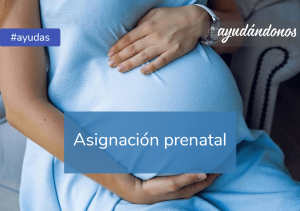 Asignación prenatal