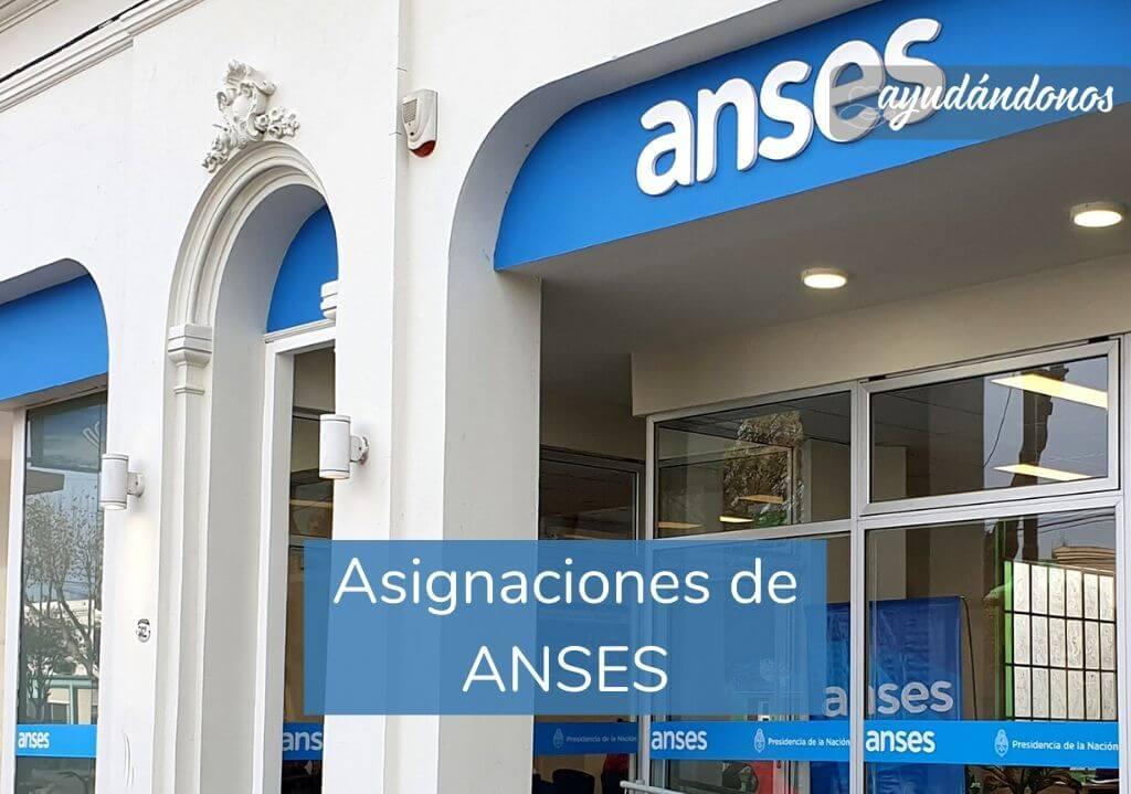 Asignaciones de ANSES Estado Argentino
