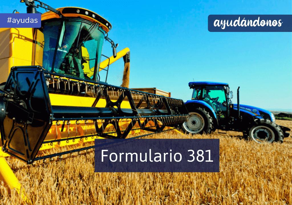 Formulario 381