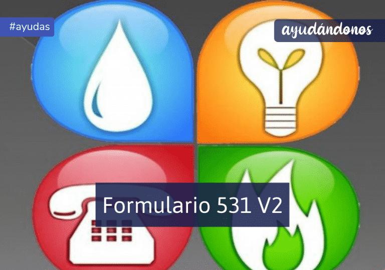 Formulario 531 V2