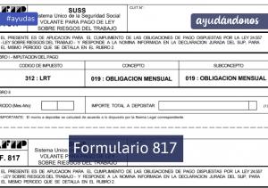 Formulario 817