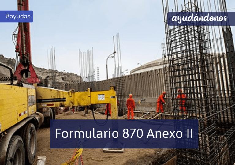Formulario 870 Anexo II
