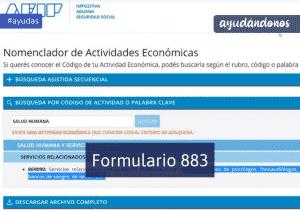 Formulario 883