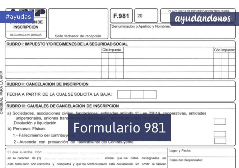 Formulario 981