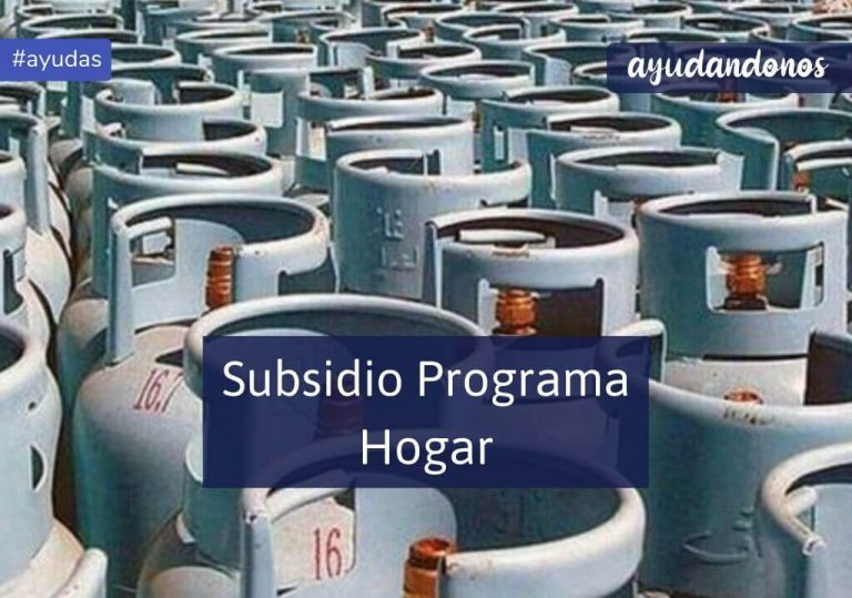 Subsidio programa hogar