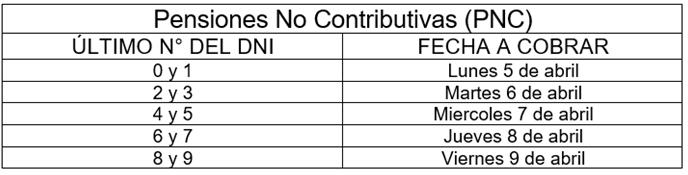 pensiones no contributivas 1